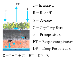 Picture illustrating how water evaporates from soil